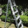 1.8m Ladder hire