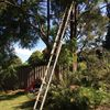 Extension Ladder 5m(16ft) hire