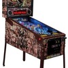 Walking Dead LE Pinball  hire