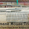 Humane Mouse Trap hire